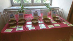 Bibelausstellung in Lambach